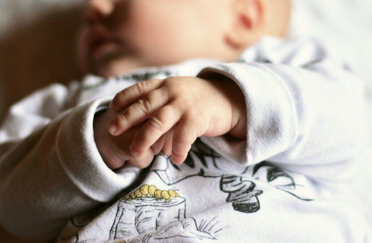 Amankah Ginseng untuk Ibu Hamil? Berikut Jawaban Selengkapnya