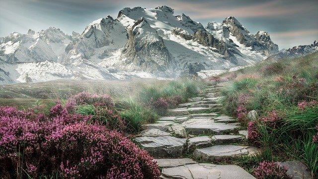 Ketahui, Ini 5 Jalur Pendakian Gunung Lawu Yang Bisa Pendaki Lewati